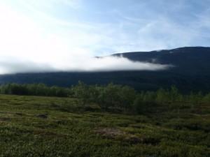 Früher Morgen in Abiskojaure