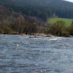 113km Kajaktour – 3. Tag – Blaibach bis Cham