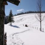 Wandern vom Schliersee zum Tegernsee