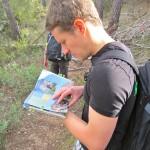 Klettern auf Mallorca – Kletterführer
