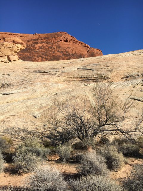 Valley of Fire - White domes loop
